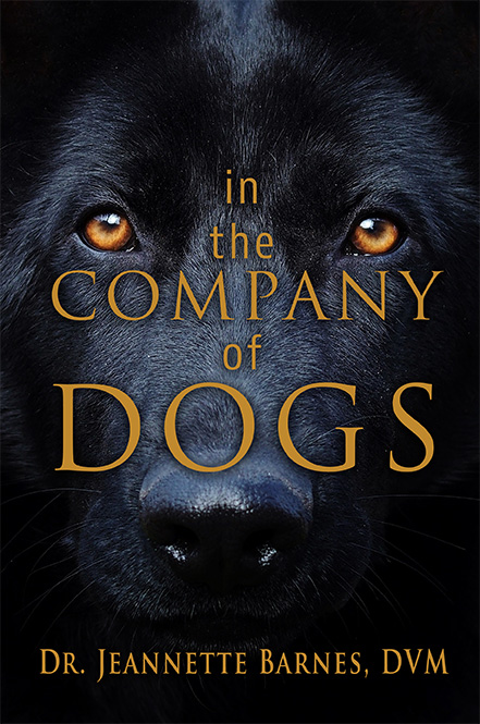 In the Company of Dogs Releases