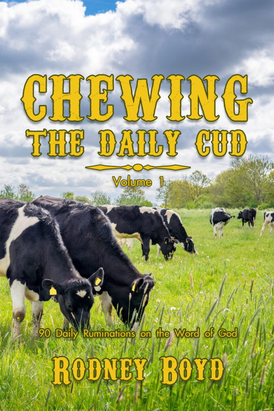 Chewing the Daily Cud