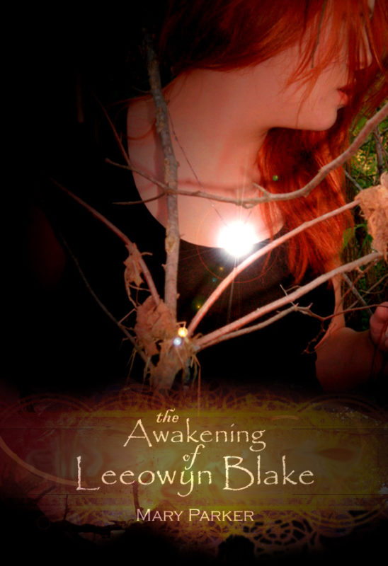The Awakening of Leeowyn Blake